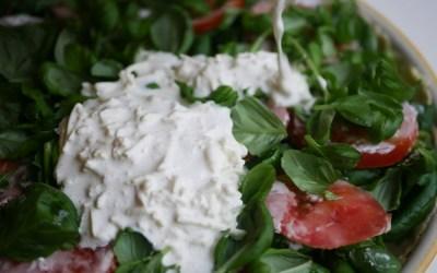 Vegaaninen haaste keittiössä