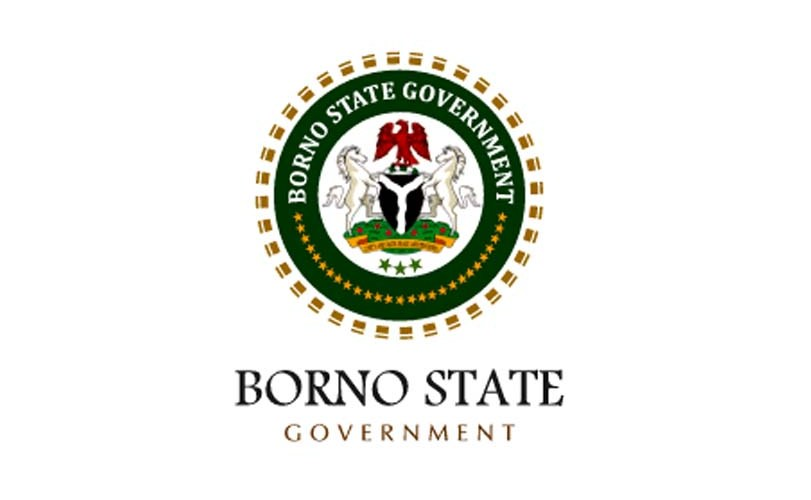 Borno State records 530 cholera cases, 23 deaths