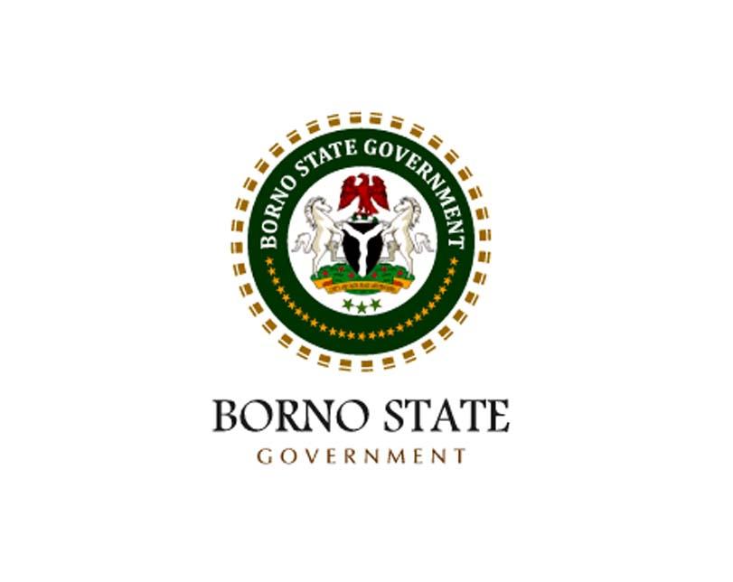 Borno State records 530 cholera cases, 23 deaths