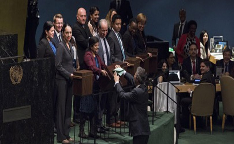 General Assembly elects new members to UN Human Rights Council