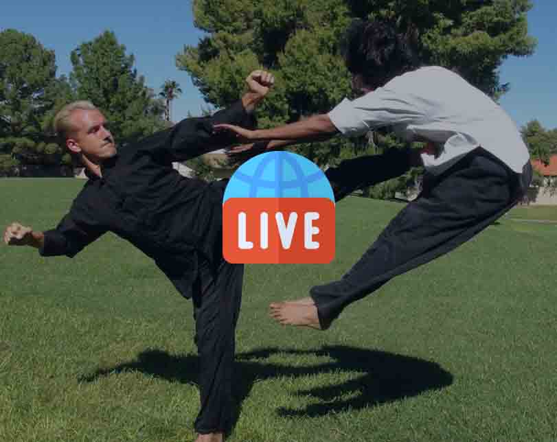 Kung Fu Action Movies 24/7 Live