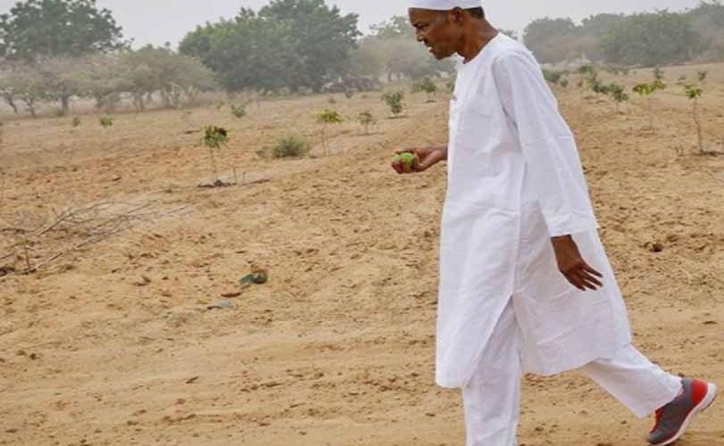 President Buhari visits his farm in Daura, Katsina state