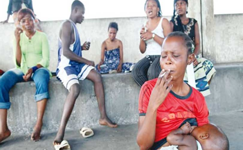 Drugs in the kitchen: Dangerous addiction of housewives, youths in Kano
