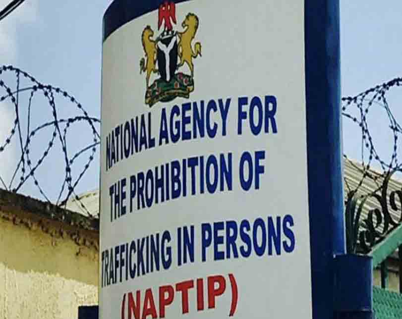 NAPTIP rescues 14, arrests three suspected human traffickers