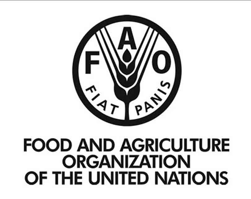 FAO trains farmers in Oyo, Borno, 10 other states on control of Fall Armyworm
