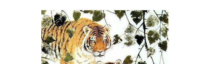 1962年的屬虎人是什么命_62年的虎是什么命_大吉大利