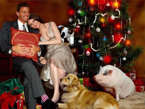 Buon Natale Bones Boreanaz Deschanel