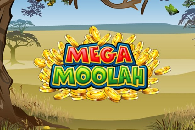 Absolootly Massive! Microgaming's Mega Moolah Hit for a Record-breaking €19.4 Million
