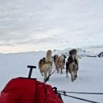 dog_sledding
