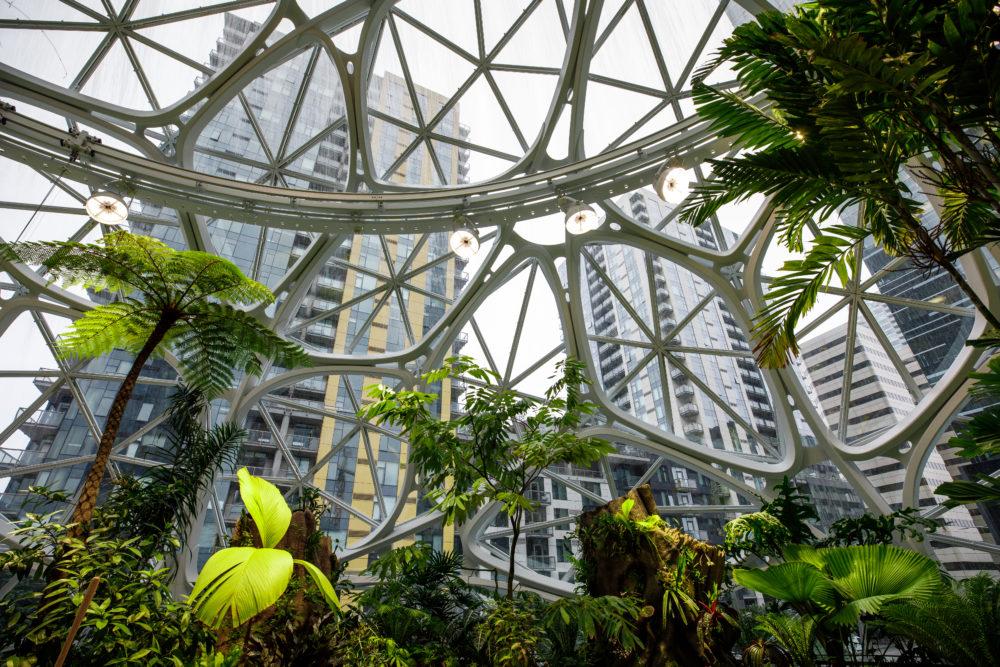 Amazon HQ - The Spheres - Interior