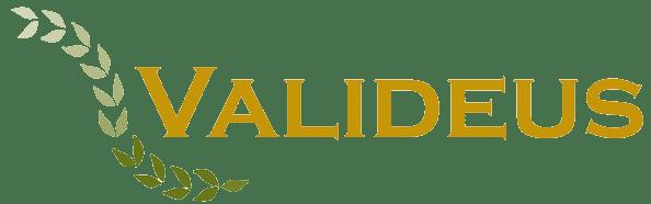 Valideus-transparent-logo