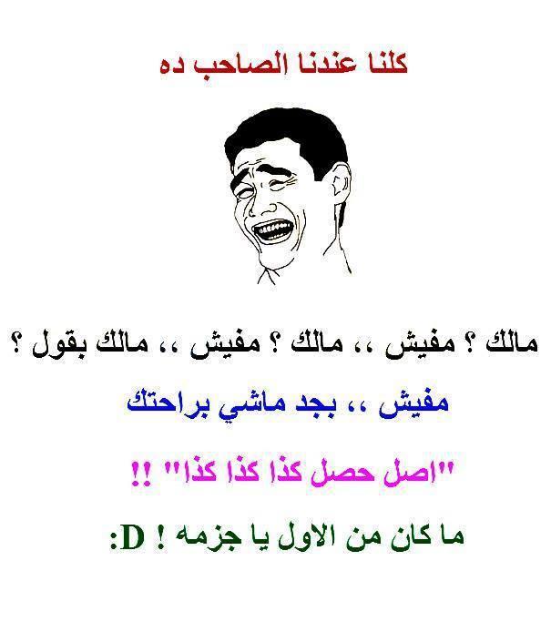 نكت جديدة مصرية اجمد 50 نكتة تموت من الضحك