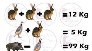 أسئلة ذكاء مئة سؤال لاختبار ذكائك