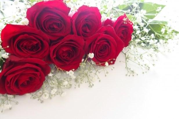 赤バラとカスミソウ