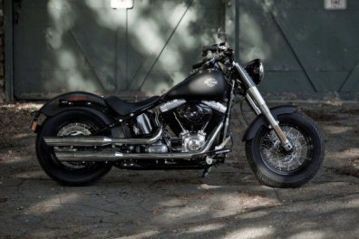 Harley Davidson Sportster Seventy-Two and Softail Slim 06