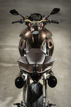 Aprilia Tuono Stingray by Vilner Custom - 15