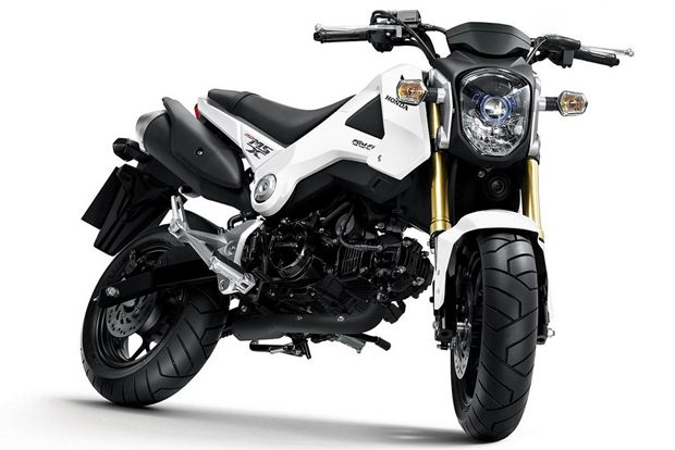 New Honda MSX125 announced
