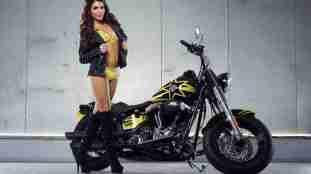 Harley Davidson Rockstar Energy 06