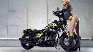 Harley Davidson Rockstar Energy 22
