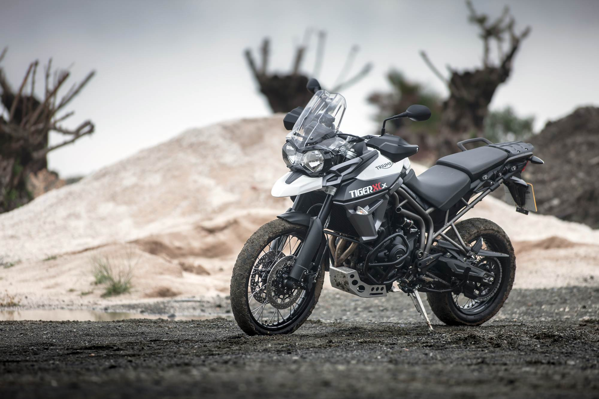 2015 Triumph Tiger 800 XCx static