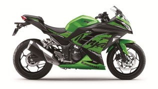 2019 Kawasaki Ninja 300 Green colour option
