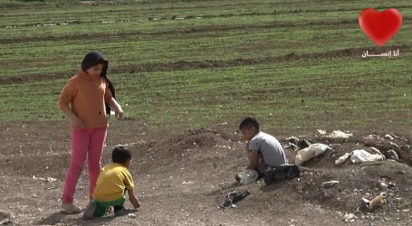 أطفال سوريون يزرعون الحشيش في لبنان