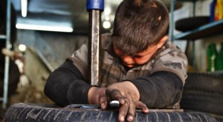 العمل يسرق أحلام الأطفال السوريين