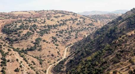 علي مملوك يتولى مهمة مكافحة التهريب عبر الحدود اللبنانية