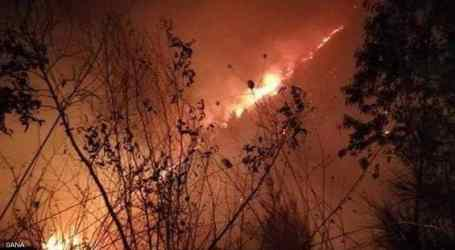 السلطة السورية لا تعوض المواطنين المتضررين من الحرائق
