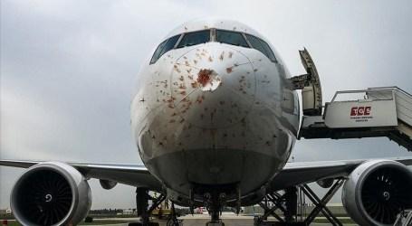 طائرة شحن تركية تهبط اضطراريا لاصطدامها بسرب من الطيور