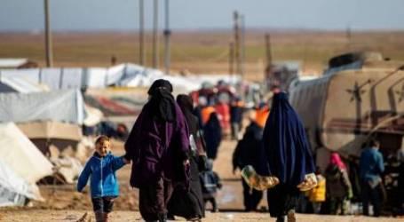 في اليوم العالمي لهم.. أرامل سوريا ضحايا الظروف القاسية