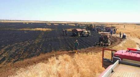 حريق يلتهم مساحات واسعة من القمح في السويداء
