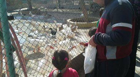 500 مليون ليرة تصرف سنويا للعناية بحيوانات حديقة العدوي في دمشق