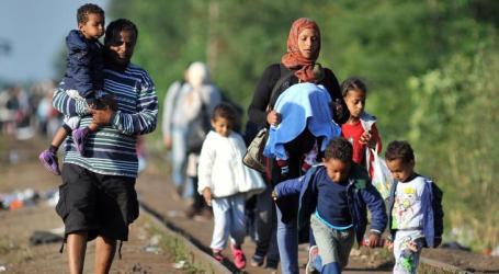 في مقدمتهم السوريين.. تضاعف عدد طالبي اللجوء إلى أوروبا