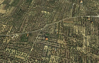 Olive groves at Thyrea area between Astros and Paralio Astros [courtesy GoogleMaps]