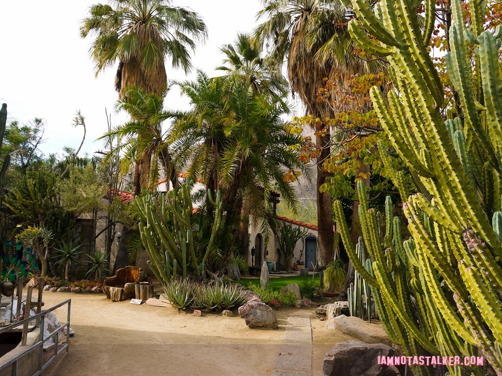 Moorten Botanical Garden | IAMNOTASTALKER