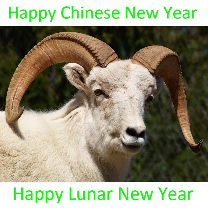 amtaboutmf.com - Happy Chinese New Year