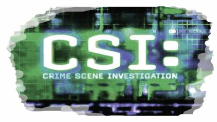 CSI Bangor to investigate dumped needles?