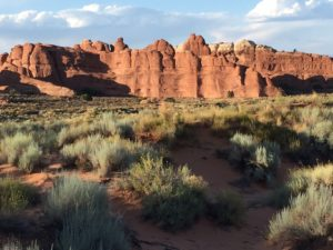 The trail to the Double-O arch.
