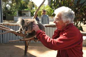 My mom Alison feeling the softness of the fur. (Photo courtesy Clive Palmer).