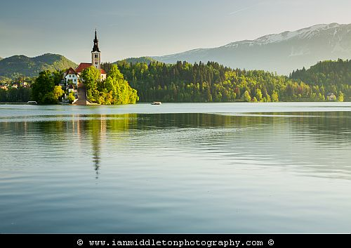 Spring morning light across Lake Bled and the island church of the assumption of saint mary, Slovenia.