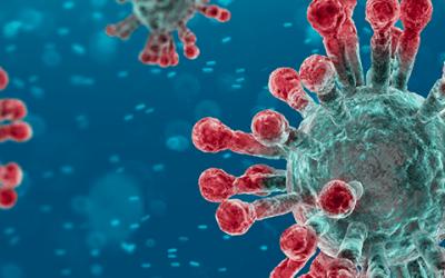 Lo que necesita saber sobre la enfermedad del coronavirus 2019(COVID-19)