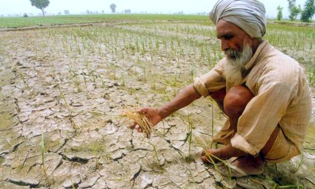 [Premium] Climate Change vs Indian Agriculture: The Need for Climate-Resilient Farming