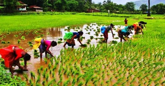 agri-export-policy features challenges upsc ias essay