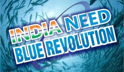 Blue Revolution in India and its Importance