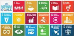 Sustainable Development Goals (SDGs) - India's Readiness & Challenges