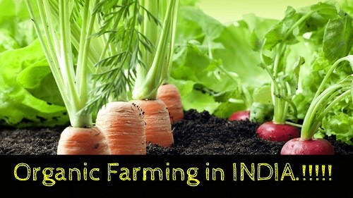 Organic Farming in India – Features, Benefits, Challenges, Initiatives