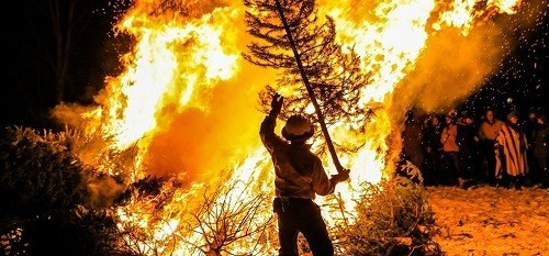Australian Bushfire Crisis – All You Need to Know