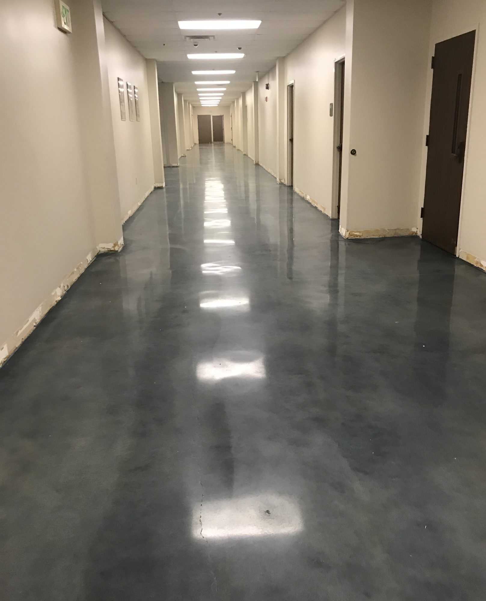 schools, polished concrete, stained concrete, school hallways