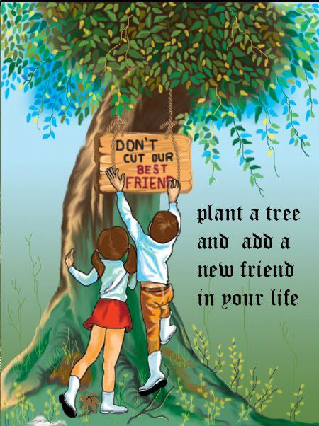 Things Life Heres Quotes Life Picture Are And Important Tree About Most